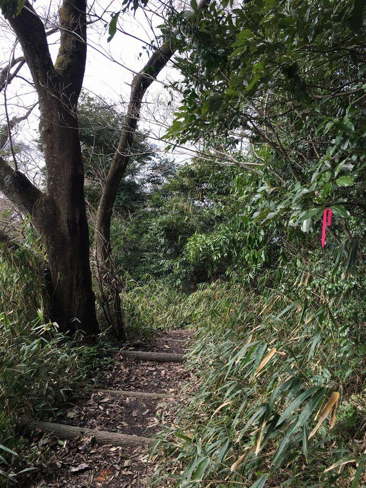 米子城の険しい道2