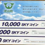 ポレットカードで10万円ふるさと納税して、3万円分のANA SKYコインを貰った話。