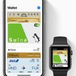 Apple Pay(アップルペイ)対応カード(iD/QUICPay/Suica)