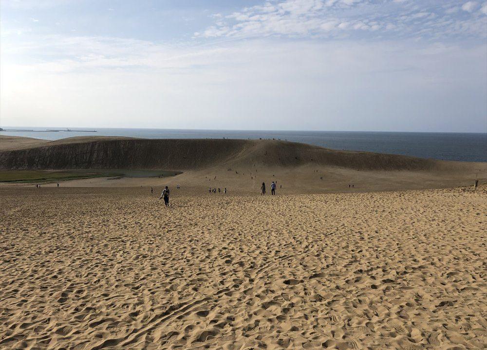 鳥取砂丘のダイナミックな景観