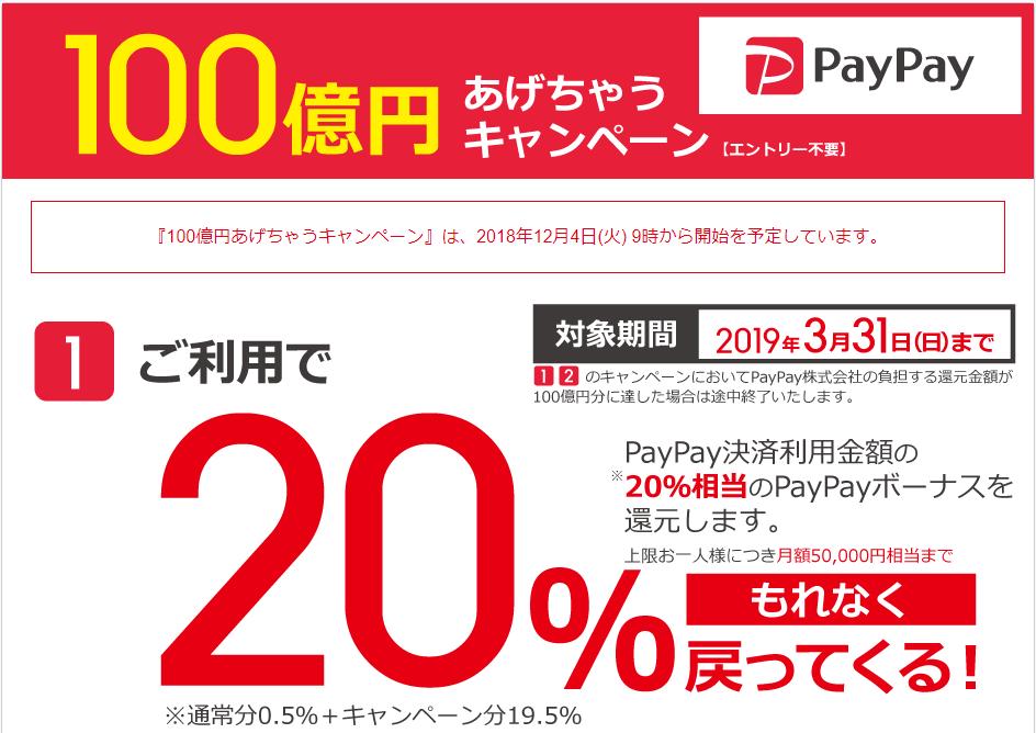 ビックカメラのPayPayキャンペーン