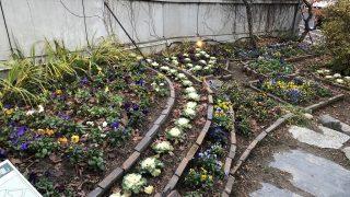 花巻の「茶寮かだん」の宮沢賢治設計と言われる花壇
