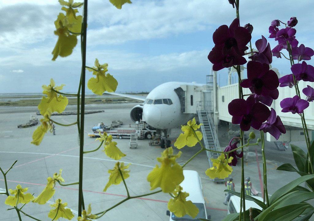 那覇空港に到着したJAL915便