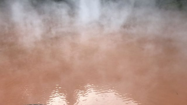 別府温泉の血の池地獄